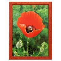 Hama 1208 rámeček dřevěný TRAVELLER II červená, 15x21cm - zvětšit obrázek