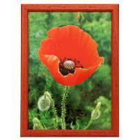 Hama rámeček dřevěný TRAVELLER II, červená, 29,7x42 cm - zvětšit obrázek